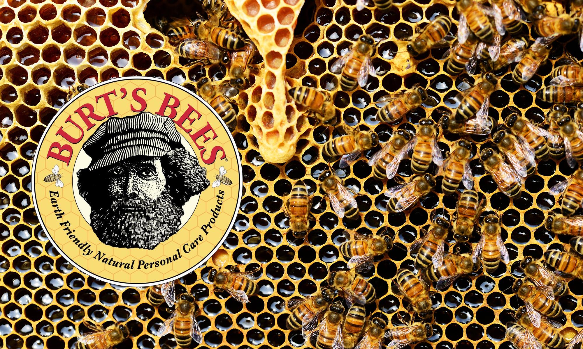 Burt's Bees original logo and bee photo